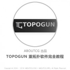 pro_topogun_141011