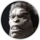 tut_monkey3_180411_02